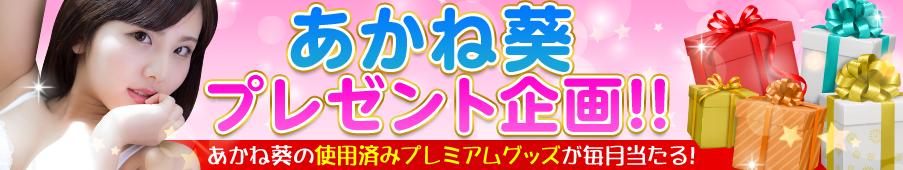 あかね葵プレゼント企画!!