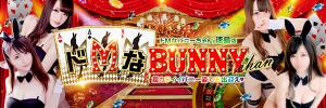ドMなバニーちゃん 徳島店