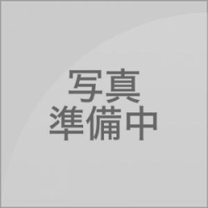 Shou(しょう)(AMATERAS-アマテラス-)