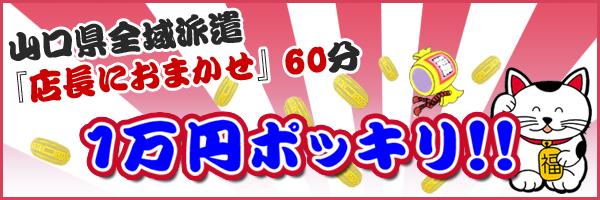 山口県全域派遣在籍人数NO.1『店長におまかせ』60分1万円ポッキリ!!