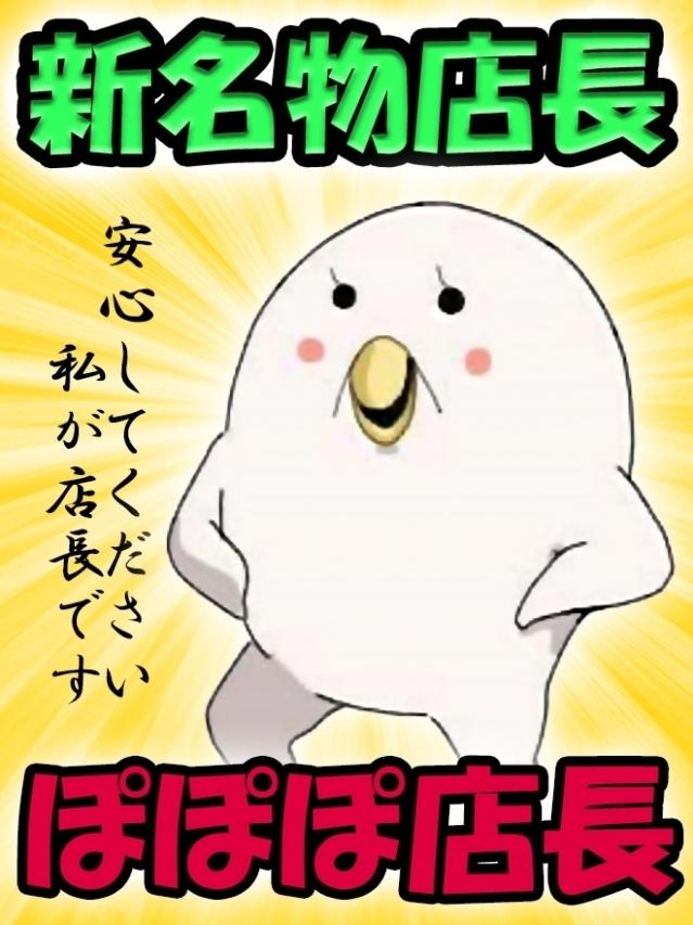 新名物店長ぽぽぽ(ポポロン☆周南~岩国店(徳山・下松・熊毛))