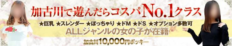 加古川10000円ポッキー(加古川・高砂方面 デリヘル)