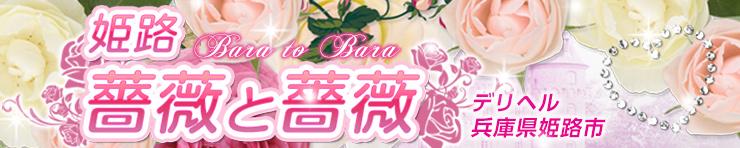 薔薇と薔薇(姫路 デリヘル)