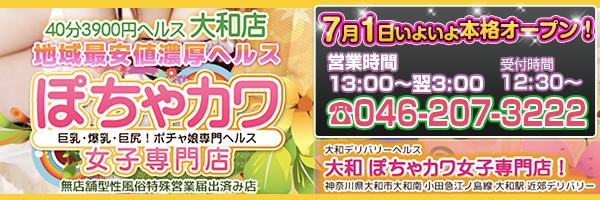 大和最安値宣言!激安3900円ヘルス!ぽちゃカワ女子専門店