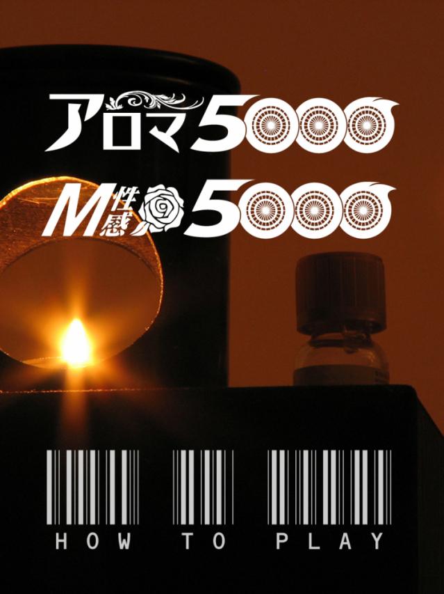 遊び方(アロマ5000)
