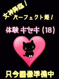 香川県 デリヘル デリバリーヘルス 猫の魔法使い 体験キセキ