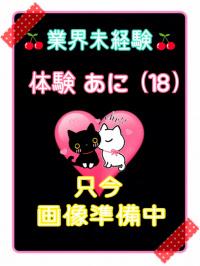 香川県 デリヘル デリバリーヘルス 猫の魔法使い 体験あに(アロマエステ)