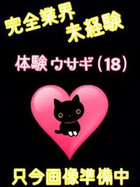 香川県 デリヘル デリバリーヘルス 猫の魔法使い 体験ウサギ(業界未経験)