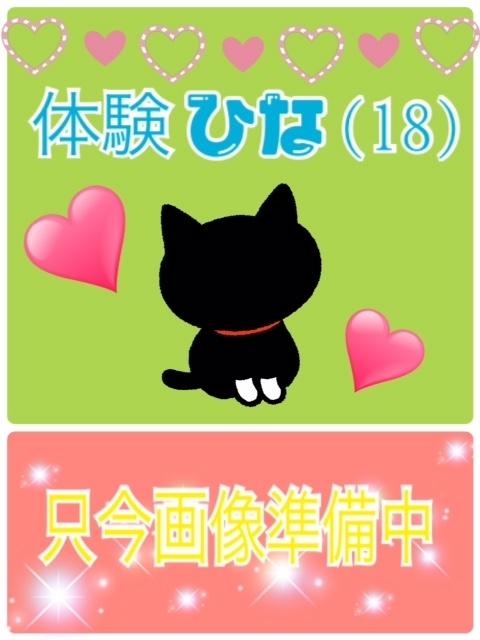 体験ひな(猫の宅急便 the Second)