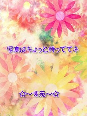 体験奥様・しずか(紫苑)
