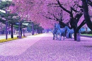 春ですね(^^♪