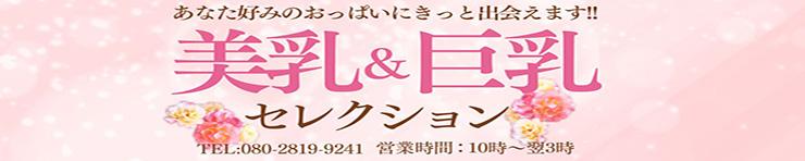 美乳&巨乳セレクション(青森県 デリヘル)