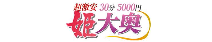 超激安 30分5000円 姫大奥(名古屋駅周辺 デリヘル)